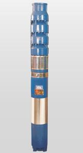 """8"""" Submersible Pump Set"""