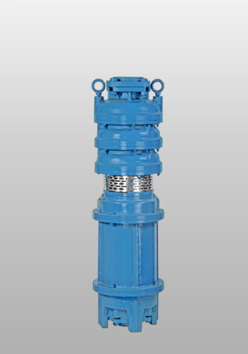 Vertical Open Well Pump